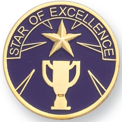 Star of Excellence Award Pin