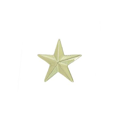 Gold Star Award Pin