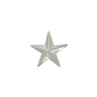 Silver Star Award Pin