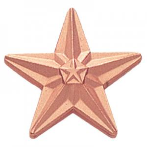 Tyson Bronze Star Award Pin