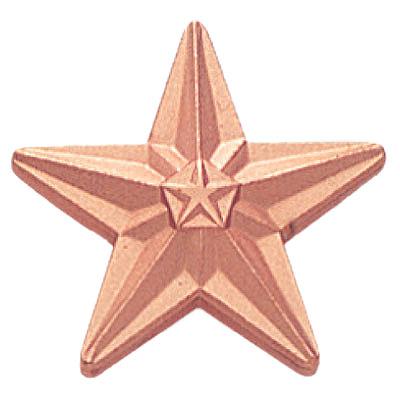 Tyson Bronze Star Award Pin