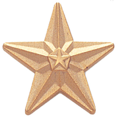 Tyson Gold Star Award Pin