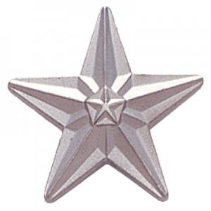 Tyson Silver Star Award Pin