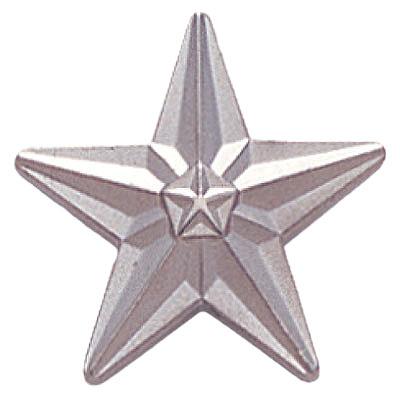 Tyson Silver Star Award Pin