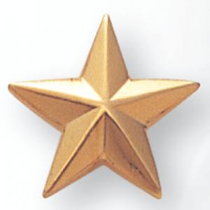 Aurora Star Award Pin