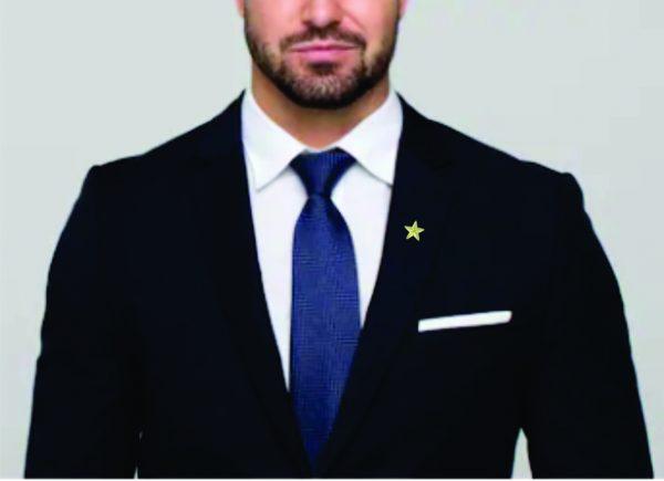 Luna Star Award Pin