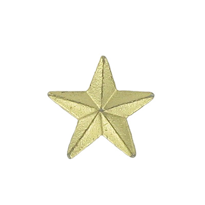 Luna Star Award Pin