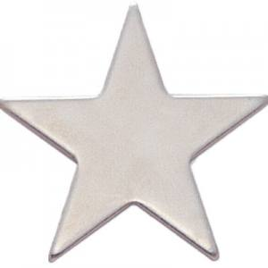 Luna Silver Star Award Pin
