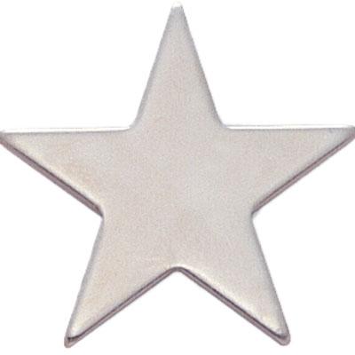 Luna Silver Star Award Pin
