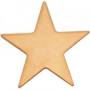 Luna Gold Star Award Pin