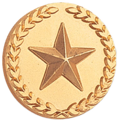 Gold Star in Wreath Award Pin