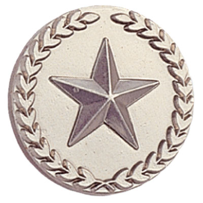 Silver Star in Wreath Award Pin