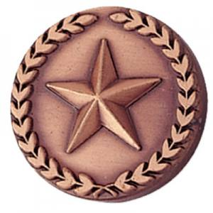 Bronze Star in Wreath Award Pin