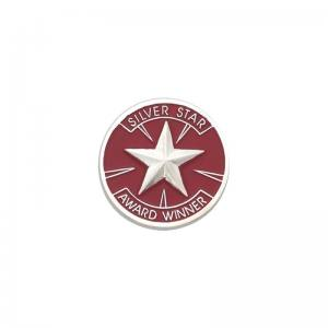 Silver Star Award Winner Award Pin