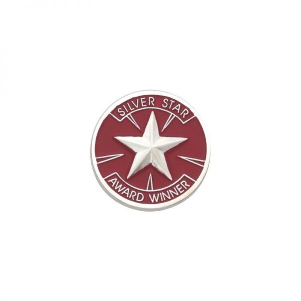 Silver Star Award Winner Award Pin