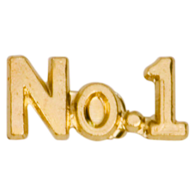No. 1 Chenille Pin