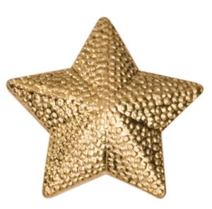 Gold Star Chenille Pin