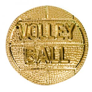 Volleyball Chenille Pin