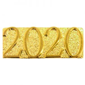 Gold 2020 Chenille Bar Pin