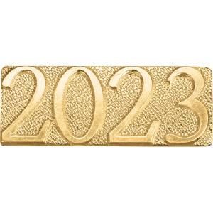Gold 2023 Chenille Bar Pin