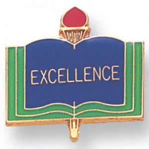 Excellence Award Pin