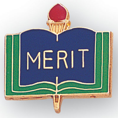 Merit Award Pin