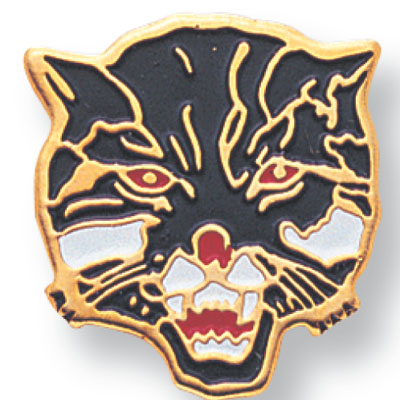 Wildcat Mascot Award Pin