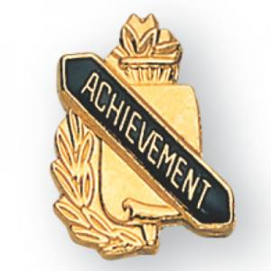 Achievement Scroll Award Pin