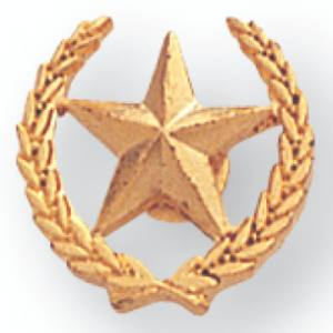 Star & Wreath Award Pin