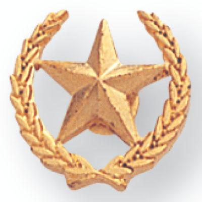 Star & Wreath Award Pin