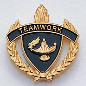 Teamwork Scholastic Award Pins