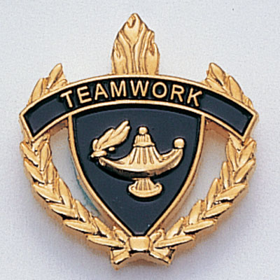 Teamwork Scholastic Award Pins